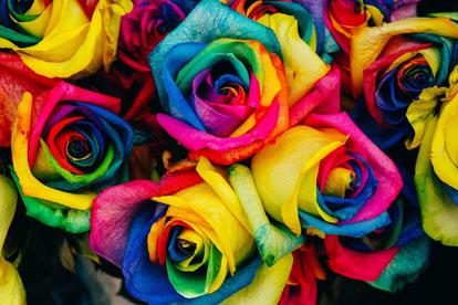 La flor de Capricornio - Horóscopo Capricornio